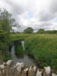 From a bridge over the River Stour flowing through pastures in the Stour Vale benefice